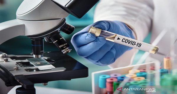 Kajian Terbaru Inggris Soal Varian Baru Virus Corona Sedikit Bikin Lega Jpnn Com